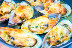 Mussels Cream Cheese Sauce Stock Photos