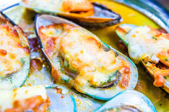 Mussels Cream Cheese Sauce Royalty Free Stock Images