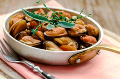 Mussels in cream and garlic sauce with provencal herbs Stock Image