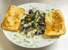 Mussels. In creamy cider sauce with garlic bread royalty free stock photos
