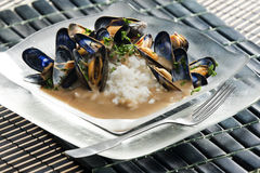 Mussels on curry paste. Still life of mussels on curry paste Stock Photos