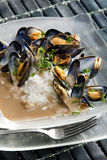 Mussels on curry paste Stock Photo