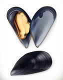 Mussels. 3d vector icon. Seafood Royalty Free Stock Photography