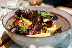 Mussels in a deep clay bowl Royalty Free Stock Photo