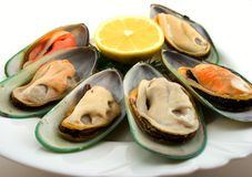 Mussels on dish Stock Images