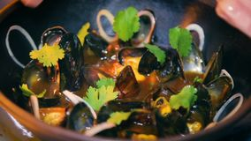 Mussels bowl restaurant presentation - serving delicious dish stock video