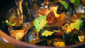 Mussels in seafood restaurant cooking stock video footage