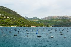 Mussels farming in Croatia Royalty Free Stock Photo