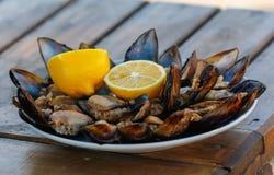 mussels faszerujący Zdjęcia Royalty Free