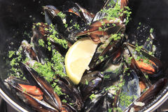 Mussels fish fry Royalty Free Stock Photo