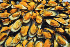 Mussels. France's most special mussels, Mont Saint Michel AOC. These ones are cooked in a special sauce with wine and cream and called mouclade stock photos