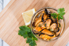 Mussels (with fresh herbs) Stock Image