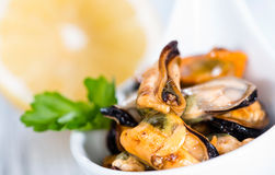 Mussels (with fresh herbs) Royalty Free Stock Photography