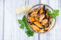 Mussels (with fresh herbs) Stock Photography