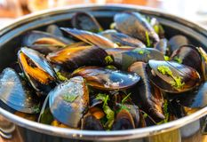 Mussels with Fries in Ostend, Belgium royalty free stock photography