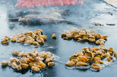Mussels frying Royalty Free Stock Photography