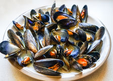 Mussels in garlic butter sauce stock photography