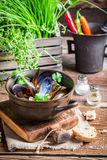 Mussels with garlic and red peppers Royalty Free Stock Photos