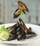 Mussels  With Garlic Sauce Royalty Free Stock Images
