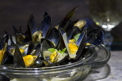 Mussels with glass of white wine and thyme Royalty Free Stock Photos