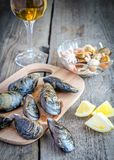 Mussels with a glass of white wine on the wooden table Royalty Free Stock Image