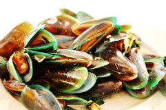 mussels gotowany thaillnd Obraz Royalty Free