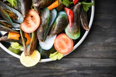 Mussels with herbs and spices on tray cooked green mussel steaming seafood royalty free stock photography