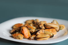Mussels. Hot mussels in a bowl Stock Photography