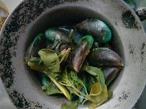 Mussels i nowi liście w potrawce Zdjęcia Royalty Free