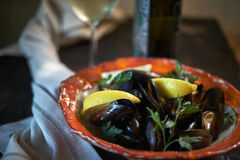 Mussels on ice ready to cook with lemon and white wine jpg Royalty Free Stock Photo