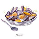 Mussels illustration. Hand drawn watercolor on white background. Royalty Free Stock Photos