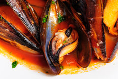 Mussels in italian rustic style Royalty Free Stock Photo