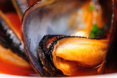 Mussels in italian rustic style Royalty Free Stock Image