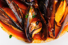 Mussels in italian rustic style Royalty Free Stock Images