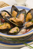 mussels kumberlandu hiszpański tapas whine fotografia royalty free