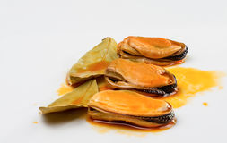 Mussels with laurel Stock Photo