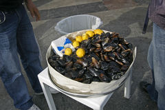 Mussels and lemon Royalty Free Stock Photo