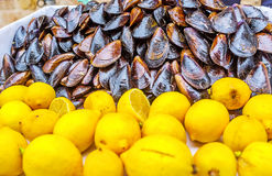 The mussels with lemon Stock Image