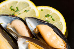 Mussels with lemon Royalty Free Stock Photo