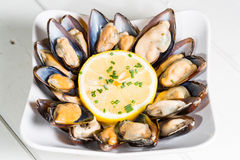 Mussels with lemon Royalty Free Stock Photography
