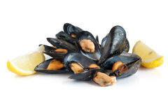 Mussels with lemon isolated Stock Photos