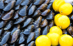 Mussels and lemon Stock Photos