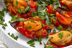 Mussels with marinara sauce tapas pinchos Stock Images