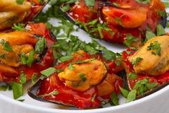 Mussels with marinara sauce tapas pinchos Stock Photography
