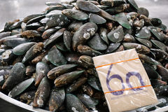 Mussels in market Stock Image