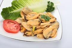 Mussels mięśni zdjęcie royalty free