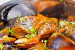 Mussels nature Stock Photos