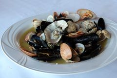 Mussels oyster, fresh, dish, plate Royalty Free Stock Photography