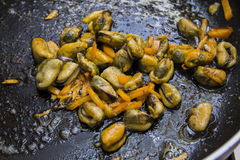 mussels on pan Royalty Free Stock Photos