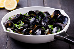 Mussels In A Pan Stock Photos